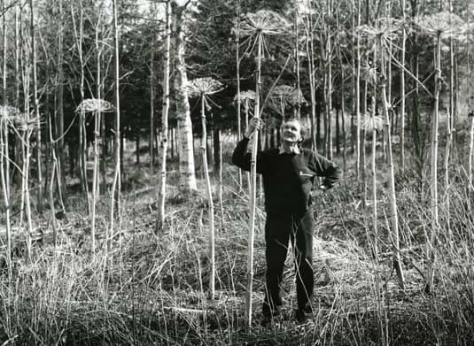 Mästerfotografen Mickelsson i ny bok