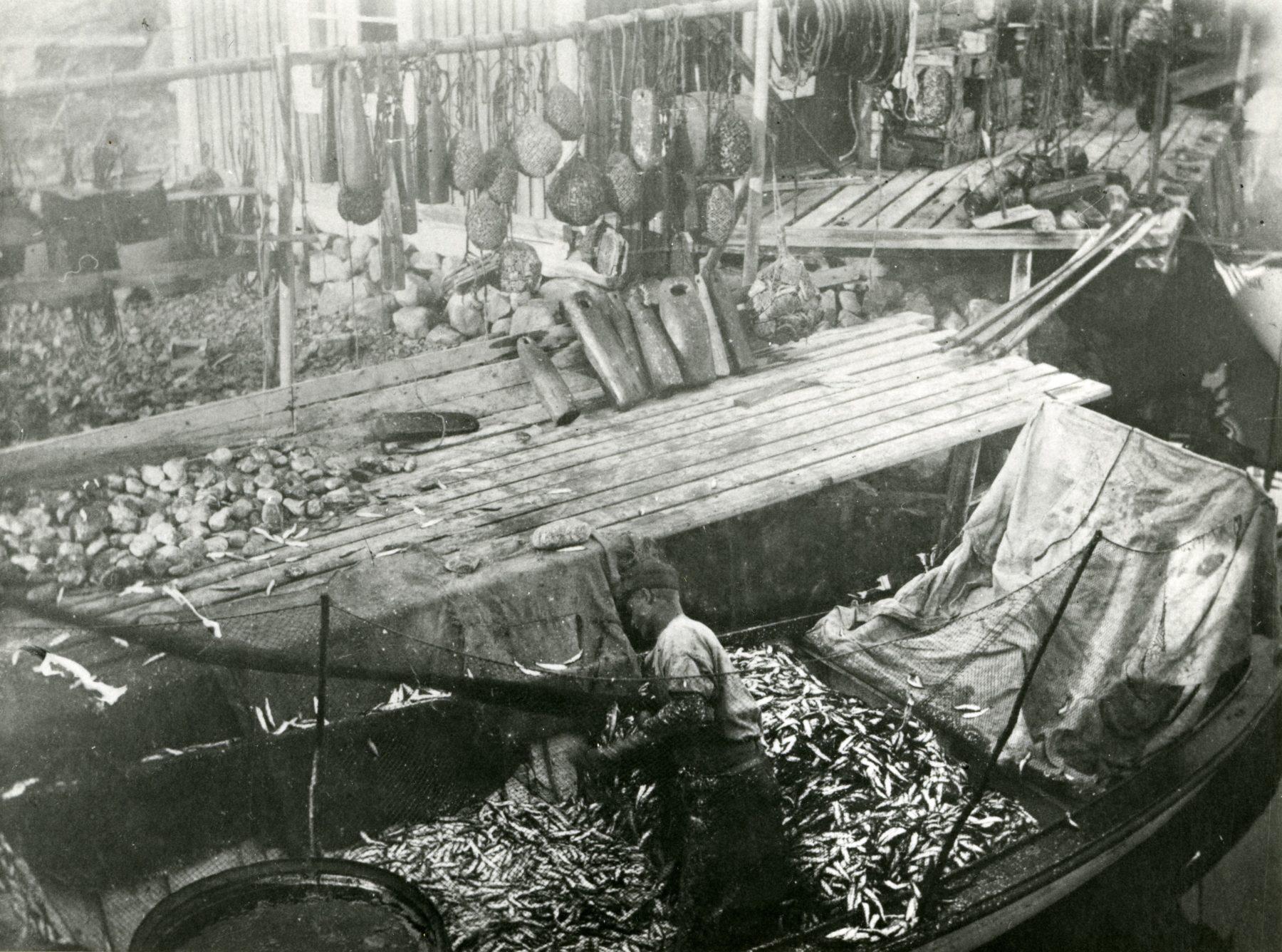 Fiskefångst i båt