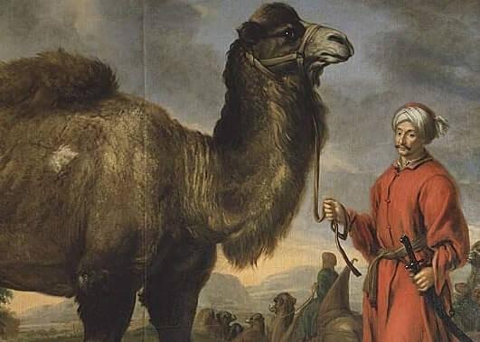 Islam i Sverige – De första 1300 åren