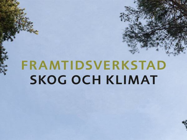 Framtidsverkstad: Skog och klimat