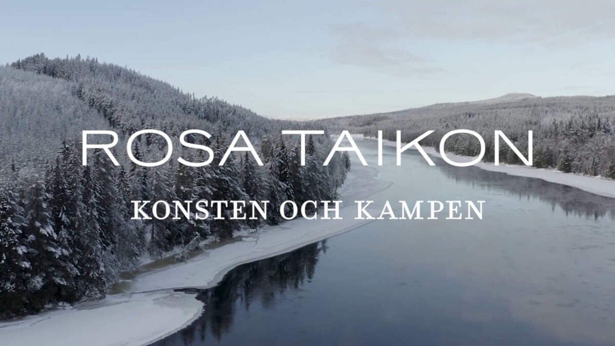 Rosa Taikon - Konsten och kampen