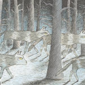 Vargar som går i skogen