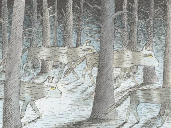 Anna-Clara Tidholm – Skogens Historia